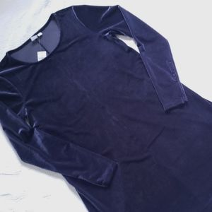 NWT GAP deep purple-y blue velvet a-line dress